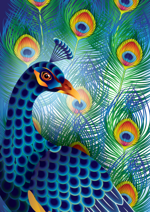 peacock fur-Converted-01-Converted